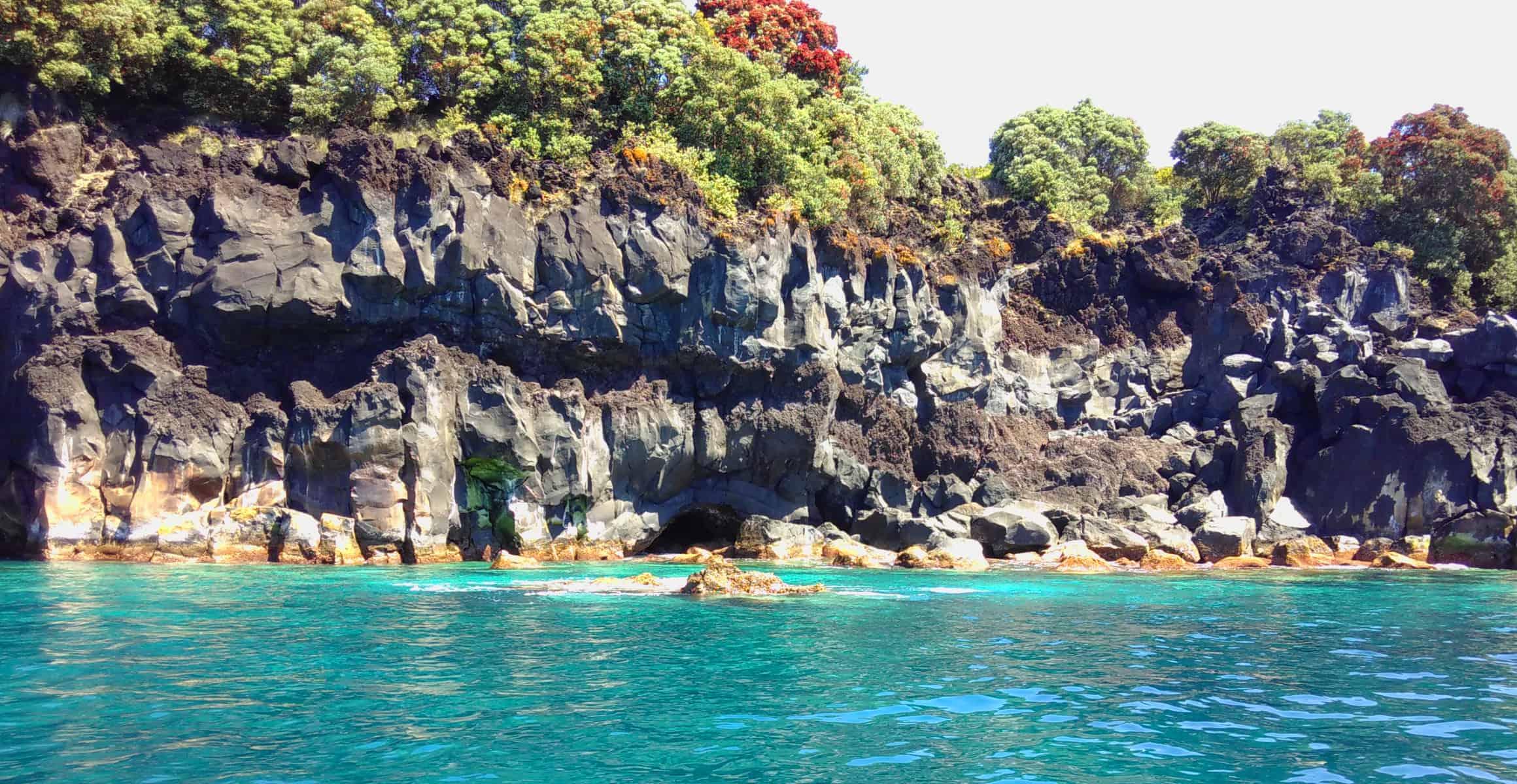Bewachsene Felsküste der Azoren Insel Pico im Vorderund das türkisfarbene Meer